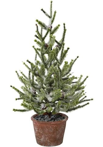 my home Kunstbaum »Fichte im Topf«, mit Schnee kaufen