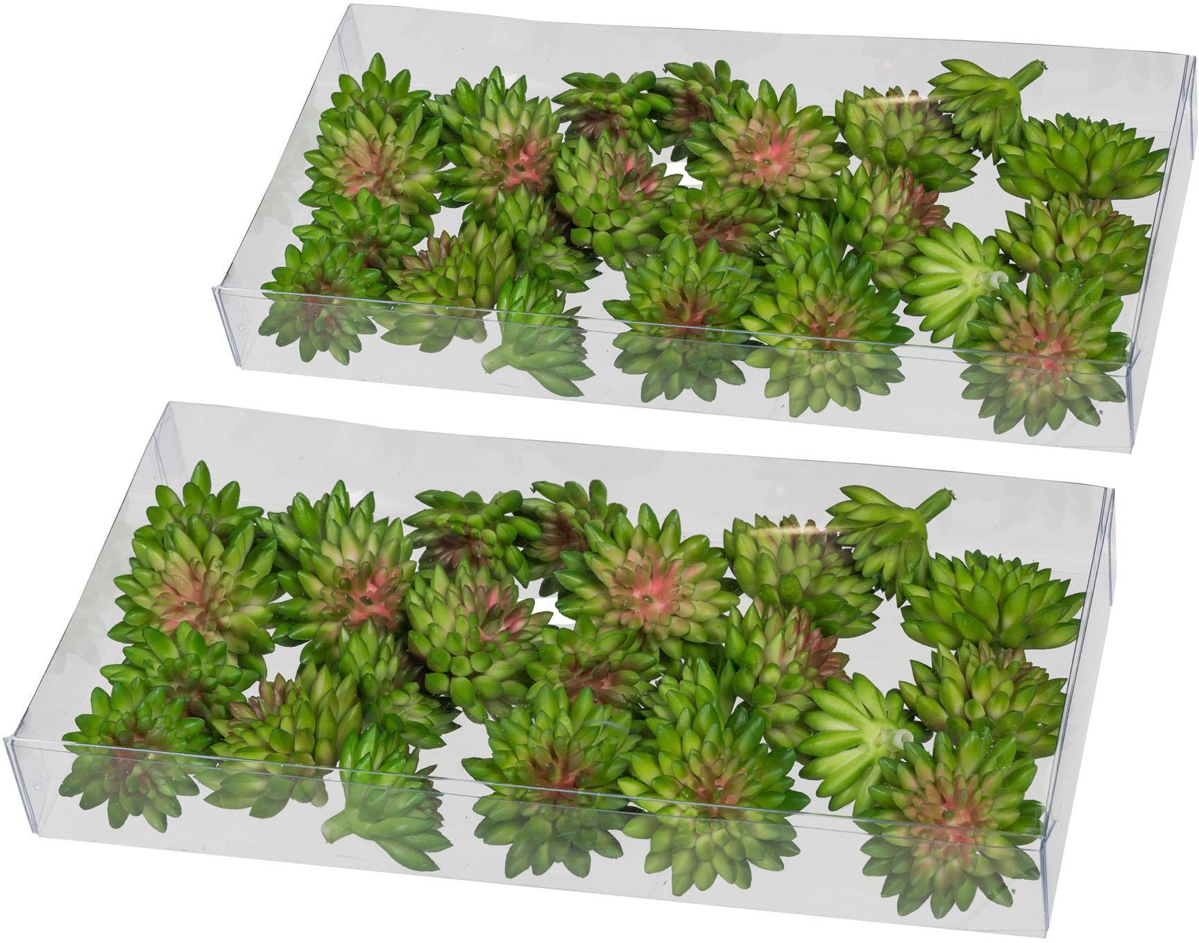 Kunstkaktus »Sukkulenten« -Tischstreu (2er-Set) | Dekoration > Dekopflanzen > Pflanzen | Grün | QUELLE