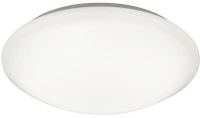 TRIO Leuchten,LED Deckenleuchte»CONVERTER«, kaufen