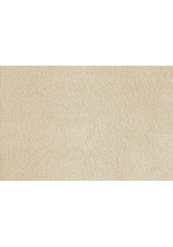 Andiamo Teppichboden »Softness«, rechteckig, 17 mm Höhe, Meterware, Breite 400 cm,... kaufen