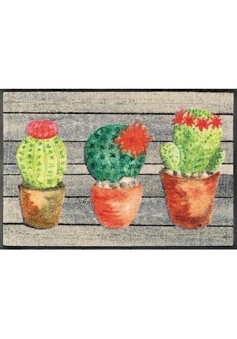 wash+dry by Kleen-Tex Fußmatte »Jardin de Cactus«, rechteckig, 7 mm Höhe,... kaufen