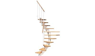 DOLLE Mittelholmtreppe »Frankfurt Buche 65«, bis 301 cm, Metallgeländer, versch. Ausführungen kaufen
