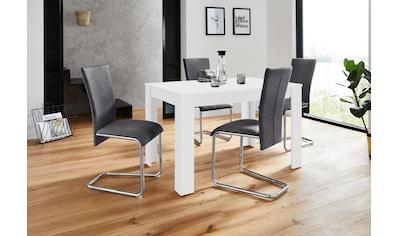 Homexperts Essgruppe »Nick2-Mulan«, (Set, 5 tlg.), mit 4 Stühlen, Tisch in weiß,... kaufen