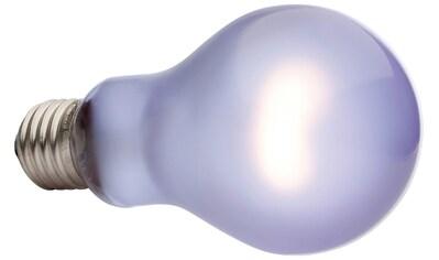 EXO TERRA Terrarienbeleuchtung »Daytime Heat Lamp«, 100 W, A21 kaufen