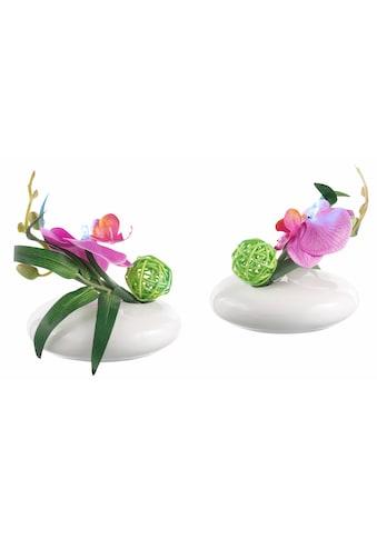 Kunstpflanze »LED - Orchidee« (Set, 2 Stück) kaufen
