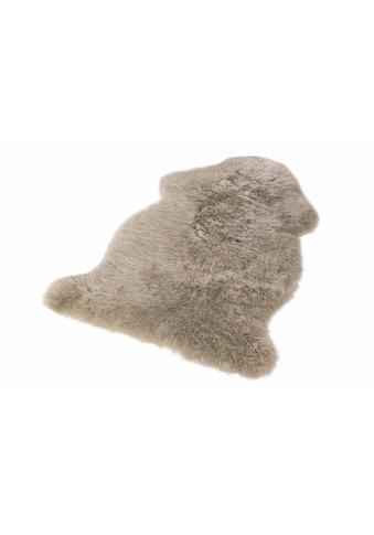 LUXOR living Fellteppich »Namika«, fellförmig, 50 mm Höhe, echtes Lammfell, Wohnzimmer kaufen