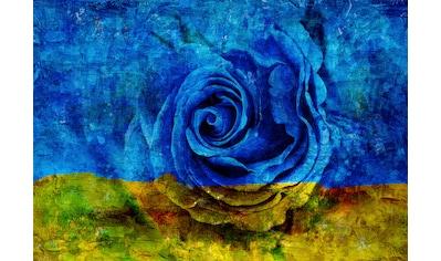 CONSALNET Papiertapete »Blau - Gelbe Rose«, in verschiedenen Größen kaufen