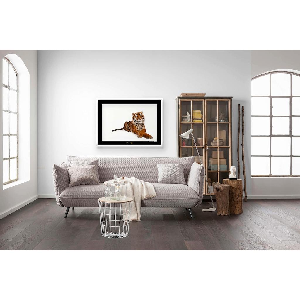 Komar Poster »Sumatran Tiger«, Tiere, Höhe: 30cm