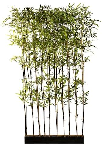 Creativ green Künstliche Zimmerpflanze »Bambusraumteiler« (1 Stück) kaufen