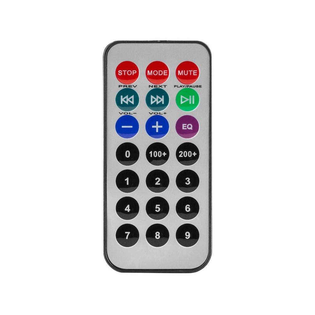 Malone Mobile Aktiv PA Box Lautsprecher 700W Bluetooth USB 2x Mikrofon