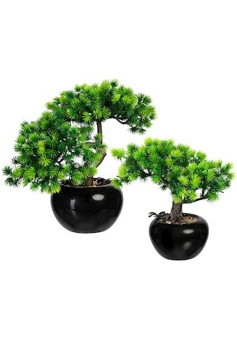 Creativ green Kunstbonsai »Bonsai Lärche« (2 Stück) kaufen