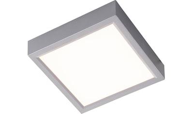 Nino Leuchten,LED Deckenleuchte»PUCCY«, kaufen