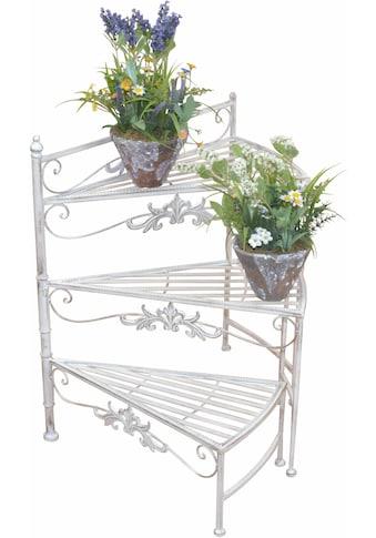 HOFMANN LIVING AND MORE Blumenständer »Treppe« kaufen