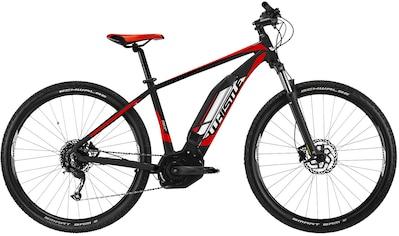 Whistle E - Bike »Yonder«, 9 Gang Shimano Altus SGS Shadow Schaltwerk, Kettenschaltung, Mittelmotor 250 W kaufen