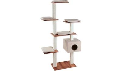 SILVIO DESIGN Kratzbaum »Cosy«, B/T/H: 110/50/175 cm, walnussdekor/sandfarben kaufen