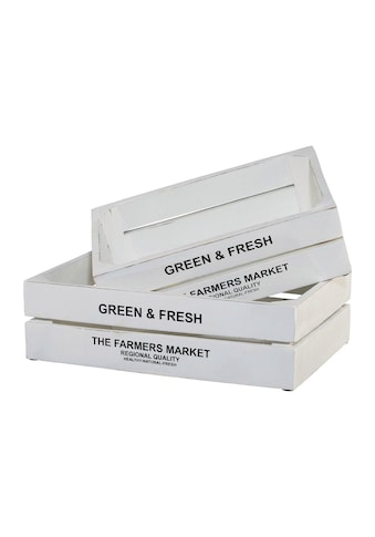 Creativ home Kiste »Green&Fresh« kaufen