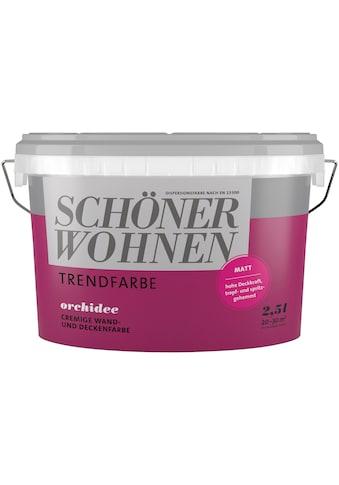 SCHÖNER WOHNEN-Kollektion Wand- und Deckenfarbe »Trendfarbe«, orchidee, 2,5 l kaufen