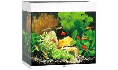 JUWEL AQUARIEN Aquarium »Lido 120 LED«, 120 Liter, BxTxH: 61x41x58 cm, in versch. Farben kaufen