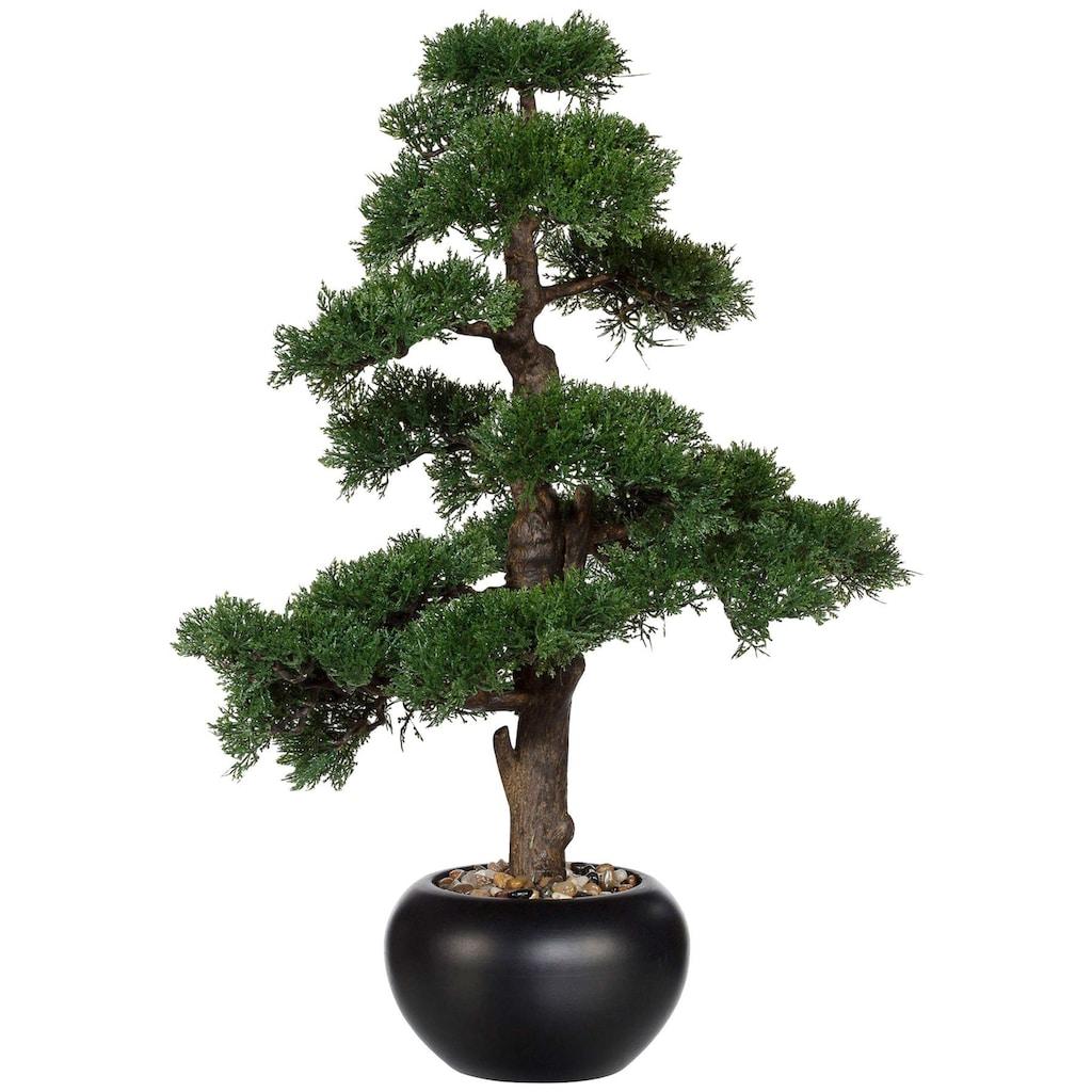 Creativ green Kunstpflanze »Bonsai Zeder« (1 Stück)