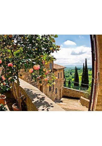 Home affaire Glasbild »banepetkovic: Rosen in San Gimignano, mit Toskanalandschaft« kaufen