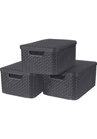 Curver Aufbewahrungsbox »Style M«, (Set, 3 St.), mit Deckel anthrazit, 3 x 18 Liter kaufen