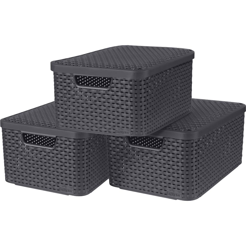 Curver Aufbewahrungsbox »Style M«, (Set, 3 St.), mit Deckel anthrazit, 3 x 18 Liter