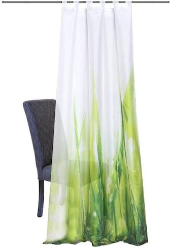 HOME WOHNIDEEN Vorhang »PLYMOUTH«, HxB: 245x120 kaufen