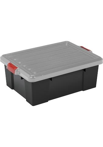 IRIS OHYAMA Aufbewahrungsbox »SK430« (Set, 3 Stück) kaufen