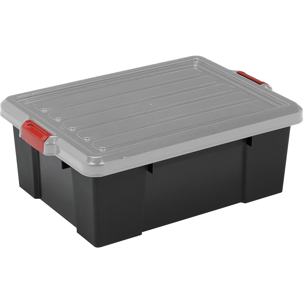 IRIS OHYAMA Aufbewahrungsbox »SK430«, (Set, 3 St.)