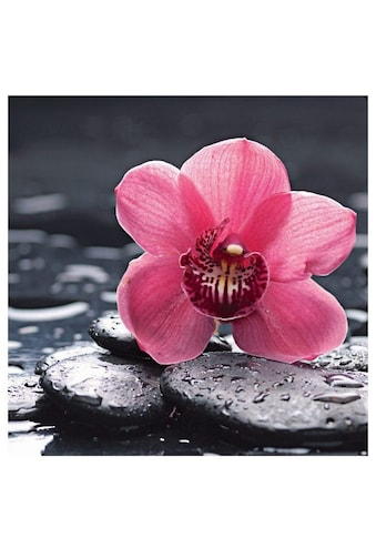 Home affaire Glasbild »Still life with pepple and macro of orchid with water drops« kaufen