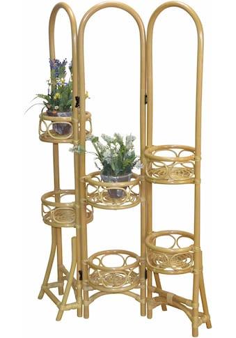 Home affaire Paravent, Rattan mit Blumenhalterung kaufen