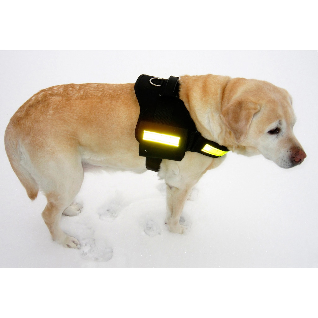 HEIM Hunde-Geschirr »Profi-Set«, Nylon