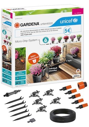 GARDENA Bewässerungssystem »Micro-Drip-System, 13000-51«, Start-Set Pflanztöpfe S,... kaufen