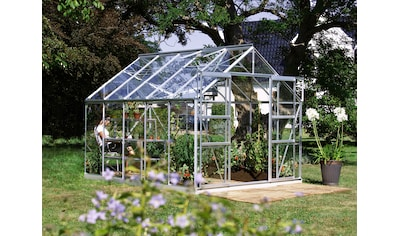 KONIFERA Set: Gewächshaus »Calisto 8300«, BxTxH: 257x321x232 cm, Glas, inkl. Fundamentrahmen kaufen