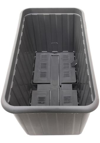 KHW Spalier »Ambizioso«, mit Pflanzkasten, BxTxH: 65x35x130 cm kaufen