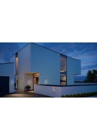 steinel LED Außen-Wandleuchte »Spot ONE S«, LED-Board, Warmweiß, 90° Bewegungsmelder,... kaufen
