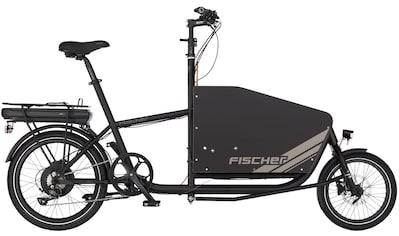 FISCHER Fahrräder E - Bike 9 Gang Shimano Sora Schaltwerk, Kettenschaltung, Heckmotor 250 W kaufen