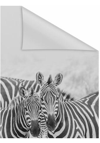 LICHTBLICK ORIGINAL Fensterfolie »Zebra«, 1 St., blickdicht, strukturiertKlebepunkte,... kaufen