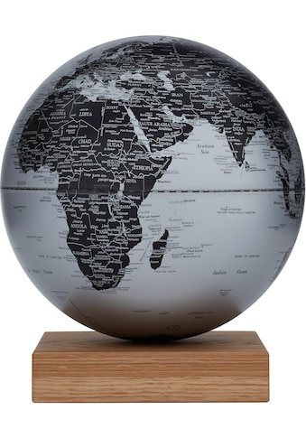 emform® Globus »Platon Oak matt silver« kaufen