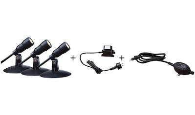 HEISSNER Set: LED - Spotleuchte »Smart Lights L410 - 00«, 3x1 Watt, warmweiß, mit Trafo, Dämmerungssensor kaufen