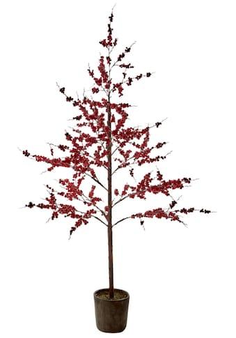Kunstpflanze »Berry« kaufen