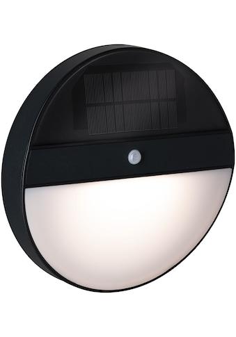 Paulmann LED Außen-Wandleuchte »Elois«, LED-Board, 1 St., Warmweiß, Solar, mit... kaufen