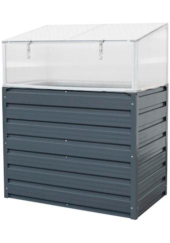KONIFERA Frühbeet »GBX-CF8«, BxTxH: 99x60x43 cm, mit Frühbeetaufsatz kaufen