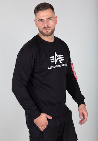 Alpha Industries Sweatshirt »3D Logo Sweater II« kaufen