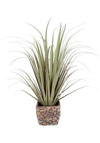 I.GE.A. Kunstgras »Gras« kaufen