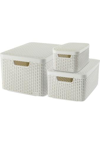 Curver Aufbewahrungsbox »Style Box L+M+S«, (Set, 3 St.), creme kaufen