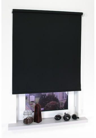 Seitenzugrollo »Uni«, Liedeco, verdunkelnd, mit Bohren kaufen