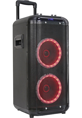 Denver Portable-Lautsprecher »TSP-450« kaufen