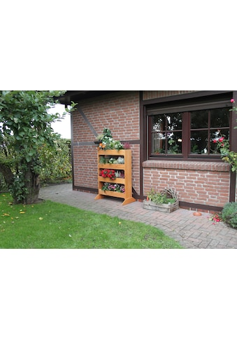 promadino Blumenständer »Blummentreppe«, BxTxH: 84x50x120 cm kaufen