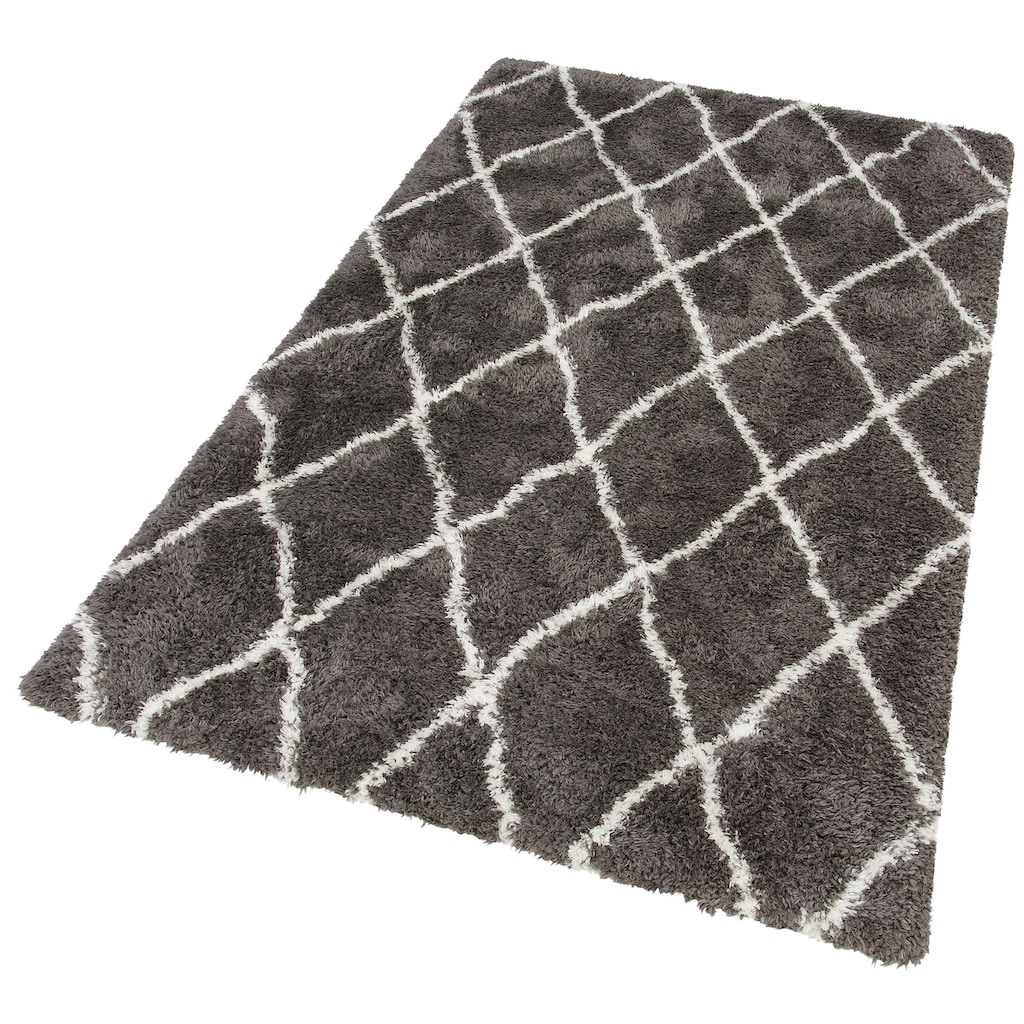 merinos Hochflor-Teppich »Floki 80075«, rechteckig, 70 mm Höhe, Besonders weich durch Microfaser
